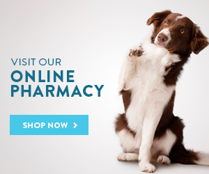 Buckeye Run Veterinary Clinic Online Store